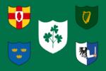 ラグビーアイルランド代表の旗