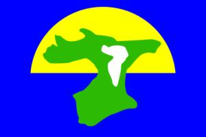 チャタム諸島の旗