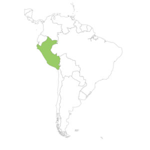 ペルーの場所