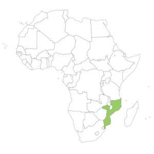 モザンビークの場所